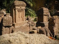 Les reliques de Carthage -2- (dominiquekt) Tags: blue mer architecture kodak tunisia tunis sidibousaid bleu dominique said khaled carthage tunisie sidi tunez sidibou touel z980 z981