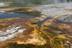 The Geyser - Old Faithful Yellowstone Park (justqqqnew) Tags: park old yellowstone geyser faithful the