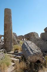 Sélinonte (J-C Isabelle) Tags: temple italia ruine italie sicilia colonne selinunte tempio sicile sélinonte templee templeg sélinous citégrecque