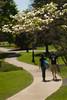 CampusBeautyDC1 (Lafayette College) Tags: spring lafayette springtime eastonpa dennisconnorsphotography dennisconnors scenicslandscape