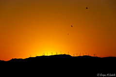 Look at me (hunter of moments) Tags: travel sunset red sky orange sun color art luz sol nikon delta catalonia cielo catalunya puestadesol ebro d5000