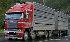 NZ Trucks (111 Emergency) Tags: truck big lorry rig nz