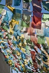 Prayer Flag Alley (William J H Leonard) Tags: china colour asian religious asia buddhist flag prayer religion chinese beijing buddhism flags tibetan prayerflags prayers prayerflag tibetanprayerflags eastasia eastasian