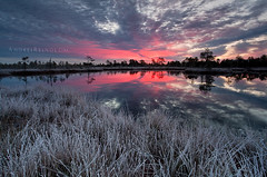 Winter is knocking on the door (Andrei Reinol) Tags: morning pink blue autumn trees light sky plants cloud sun lake cold color detail reflection tree water grass silhouette horizontal clouds sunrise landscape outdoors photography lights mirror early frozen colorful europe frost estonia slow view outdoor atmosphere nopeople baltic fresh adventure clear crisp silence nordic rise moor bog cristal northen andrei beautifulnature beautifullandscape colorfullandscape leefilter krvemaa balticlandscape estonianlandscape europeanlandscape sururaba reinol andreireinol