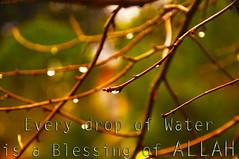 βlessing ღ (gLySuNfLoWeR) Tags: water rain muslim islam faith drop blessing rainy allah