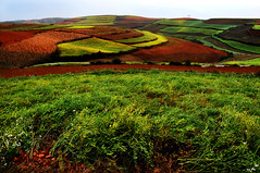 Dongchuan red earth terraces     (Melinda ^..^) Tags: china light red plant color nature field colorful earth farm terraces vegetable mel plantation land layer melinda agriculture yunnan slope dongchuan    chanmelmel dongchuanredearth