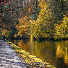 For Project 52 Week 16 (pollylew) Tags: autumn trees reflections canal huddersfieldnarrowcanal