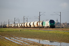 BB 75118 / Morbecque (jObiwannn) Tags: train locomotive prima fret ferroviaire