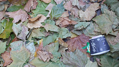Camouflage, Blighty style (likrwy) Tags: city autumn urban fall cup leaves bug litter fallen consumerism mccafe keepbritaintidy