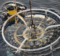 EuroFleets12 (Flabellina babai) Tags: sea mare waves nave rv urania oceanografia oceanografica