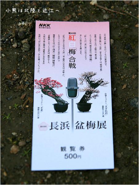 長濱市-38