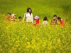 Hanoi . Field trip (Marco Sarli) Tags: life street trip flowers school girls boys girl field kids children lumix candid vietnam teacher hanoi excursion vision:flower=0527 vision:outdoor=0667 vision:plant=0826