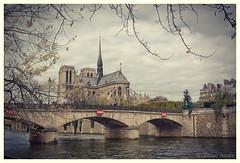 Paris - Notre Dame Cathedral from the River Seine (MattyV53) Tags: bridge vacation paris france church seine architecture river catholic cathedral gothic notredame catedrale matthewvisinsky mattyv53 mattvisinsky catedralenotredame