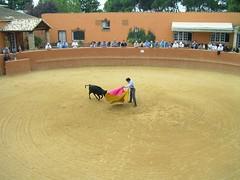 "Incentivos Deporte Rural-Herri Kirolak Navarra 41 <a style=""margin-left:10px; font-size:0.8em;"" href=""http://www.flickr.com/photos/116167095@N07/12268449343/"" target=""_blank"">@flickr</a>"