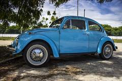 Fusca (Bruno Fernandes - Portflio) Tags: auto old blue cars car azul photography bluesky nostalgia chrome carros porta carro farol fotografia rvore aracaju rodas cuazul maaneta automvel cromado ufs carango brunofernandes canont3i