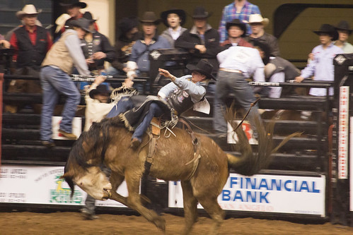 San Angelo Stockshow & Rodeo-15.jpg