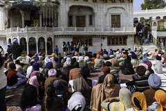 Devotees listening to religious songs in front of Akal Takht in the Golden Temple (Ashish A) Tags: india canon buildings religious temple asia action religion crowd staircase sikh devotee devotees amritsar digitalslr sikhism goldentemple canoncamera religioussymbol musicalperformance peoplesitting sittingpeople akaltakht goldentempleinamritsar canon650d musicaltroupe religioussongs canont4i peoplewearingturbans peopleinsidegoldentemple peoplelisteningtosongs