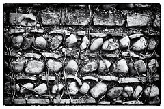 Wall (Artico7) Tags: old bw wall stones ivy pebbles