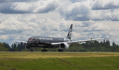 787-9 NZ (Images In Light) Tags: newzealand black fern composite airplane boeing painefield 7879 imagesinlight rossmurphy
