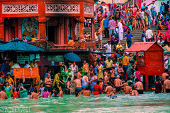 Ganga Snan (The Hindian) Tags: river bathing ganga haridwar harkipauri