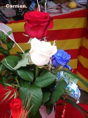 FELIZ JUEVES FLORIDO AMIG@S. (Carmen Cordero Olivares.) Tags: hojas rosas carmen blancas verdes rojas azules