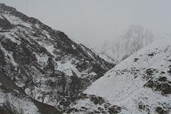 Snowing in the Himalayas (Paul Cottis) Tags: india kashmir leh ladakh paulcottis