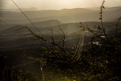 IMG_5927 (Cris_Pliego) Tags: mex querétaro sierra gorda mexico nature bucarelli mountains mision