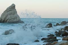DSC_7646 (Michele d'Ancona) Tags: mare scogli agitato mosso schiuma onde azzurro vela