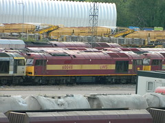 60048 at Toton TMD / Yard 08/06/2013 (37686) Tags: brush class tug 60 toton