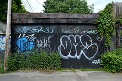 DSC_0311 v2 (collations) Tags: toronto ontario architecture documentary vernacular laneways alleys lanes garages alleyways builtenvironment vernaculararchitecture urbanfabric