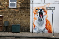 Fox (SReed99342) Tags: uk england streetart london graffiti fox irony boe