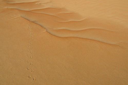 Someone was here before me ©  Still ePsiLoN