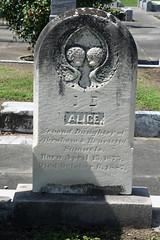 Samuels Alice
