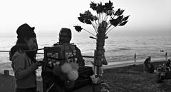frecuencia correcta (quedándote o yéndote) Tags: chile friends blackandwhite amigos love blancoynegro beach smile smiling mar weed viña amor playa right arena felicidad valparaíso amistad frecuencia happiest chinchinero 2013 huachaca