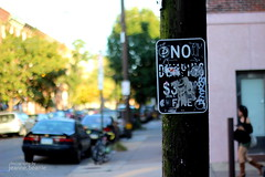 Day 263: NO DUMPING $300 FINE (jeanne.beanie) Tags: city urban philadelphia sign photography 50mm graffiti bokeh streetsign streetphotography philly southphilly project365 challenge365
