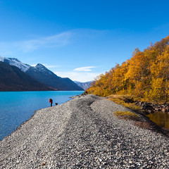 Hamnsanden, Gjende. (Svein Nordrum) Tags: autumn light dog mountain lake snow mountains fall nature grass norway season square landscape outdoors october scenery day looking view hiking clear squareformat firstsnow autumncolor jotunheimen bsquare gjende hamnsanden