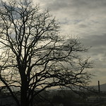 2004-12 Pontecesures - 01101