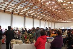 Feria de la Mujer en Llanquihue, octubre 2013 b