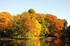 Herfst 2013 (marcoderksen) Tags: park arnhem herfst sonsbeek 2013