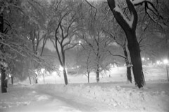 022169 04 (ndpa / s. lundeen, archivist) Tags: park trees winter blackandwhite bw snow storm 1969 film monochrome boston night 35mm ma lights evening blackwhite path massachusetts nick snowstorm nighttime 1960s february common snowfall blizzard bostoncommon beaconhill snowbank winterstorm dewolf heavysnow bigsnow coveredinsnow recordsnowfall recordsnow nickdewolf photographbynickdewolf