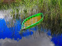La barca maltrecha (Jesus_l) Tags: espaa agua europa ciudadreal lamancha parquenatural daimiel lastablasdedaimiel jesusl