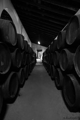 BODEGA MARQUES DE SAN GIL - LEBRIJA (JOSE C.P.) Tags: españa blancoynegro spain espanha andalucia andalusia espagne bodegas spanien spagna spanje spania 西班牙 スペイン spagne lebrija 스페인 испания ισπανια