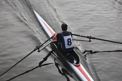 019 (weetam1961) Tags: crew rowing