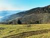 au dessus de MUNSTER  59  les VOSGES,  Beaute et Paysages de notre belle France, Guy Peinturier (GUY PEINTURIER) Tags: vairessurmarne beautedefrance guypeinturier bellefrance paysagesdefrance peinturierguy