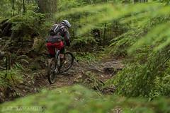Cove_Hustler_14_KazYamamura-1 (Kaz Yamamura) Tags: cove bikes shore hustler mountainbiking fromme nsmb