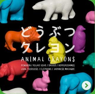 「熊貓之穴」超療癒轉蛋新作『動物蠟筆』