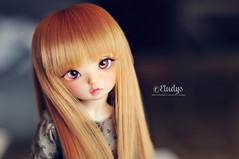 Praline (Eludys) Tags: house caroline luna fairyland viridian ltf yosd littlefee