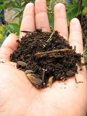 compost_18th_RI_09_4958439083_l