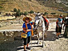 Jill and Lina, Petra taxi cab (LarrynJill) Tags: travel vacation horse hat heidi rocks roman jill hill petra jordan transportation hdr equine