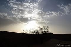 """Desierto de Auserd. Sahara Occidental. Marruecos. "" (Aysha Bibiana Balboa) Tags: paisajes sahara de atardecer cielo desierto puestadesol atardeceres marruecos ocaso dunas occidental desiertos auserd canon650d ayshabibianabalboa ocasopiestadesolocaso desiertodeauserdtiris"